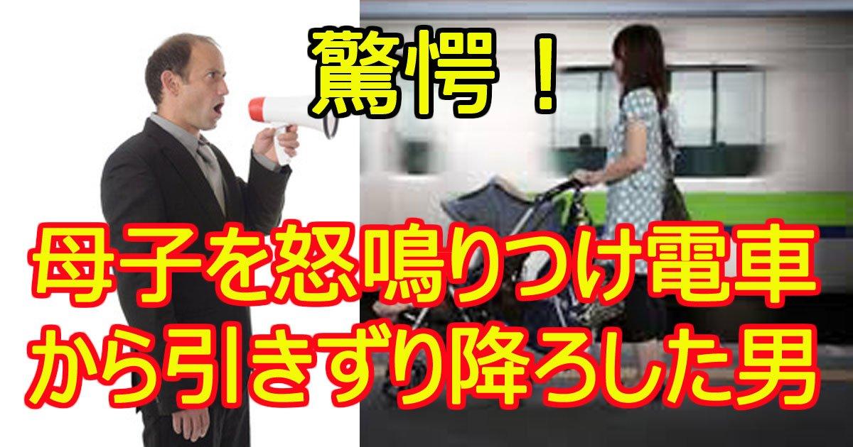 densyaboshi.jpg?resize=1200,630 - 衝撃!母子を強制的に電車から降ろした男に批判殺到!