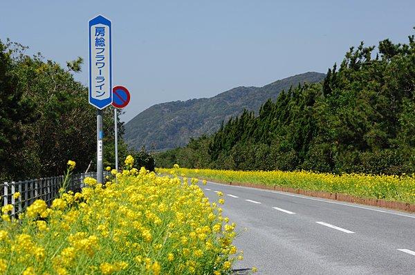 drive spot kanto area 2017030100133 1.jpg?resize=1200,630 - 混雑知らず?関東の穴場ドライブスポット