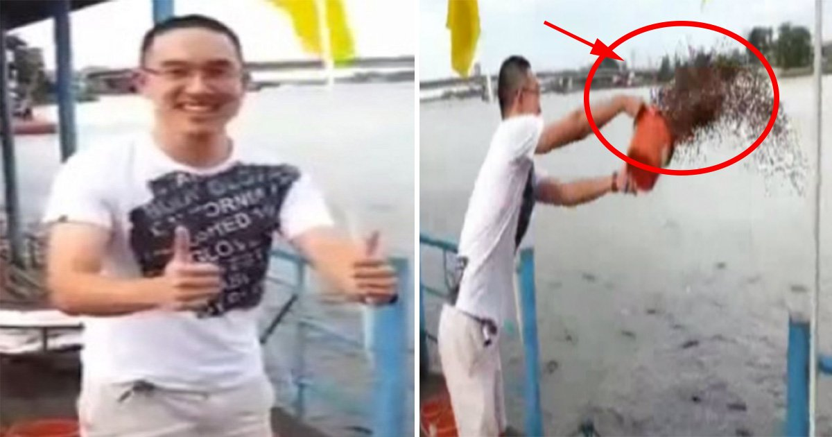 ec8db8eb84ac5 1 - A Man Tosses Buckets Of Fish Food Into The Water, What Happens Next Is Simply Mind-Boggling
