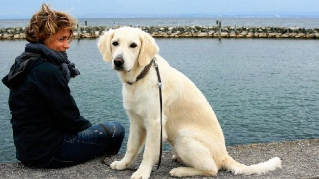 eca09cebaaa9 ec9786ec9d8c1 5 - Selon une étude, l'homme préfère le chien... à l'homme!
