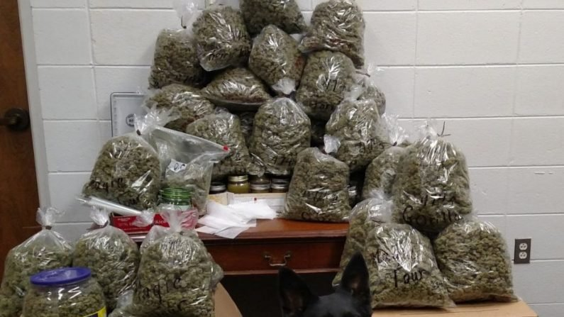 Elderly Couple Arrested With 60 Pounds of Pot 'Christmas Presents' ID'd as Parents of Top Prosecutor