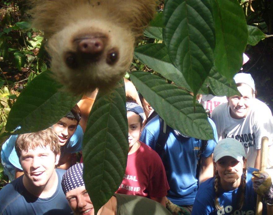 funny animal photobombs 20  880 - 순간적으로 찍힌 재미있는 동물사진