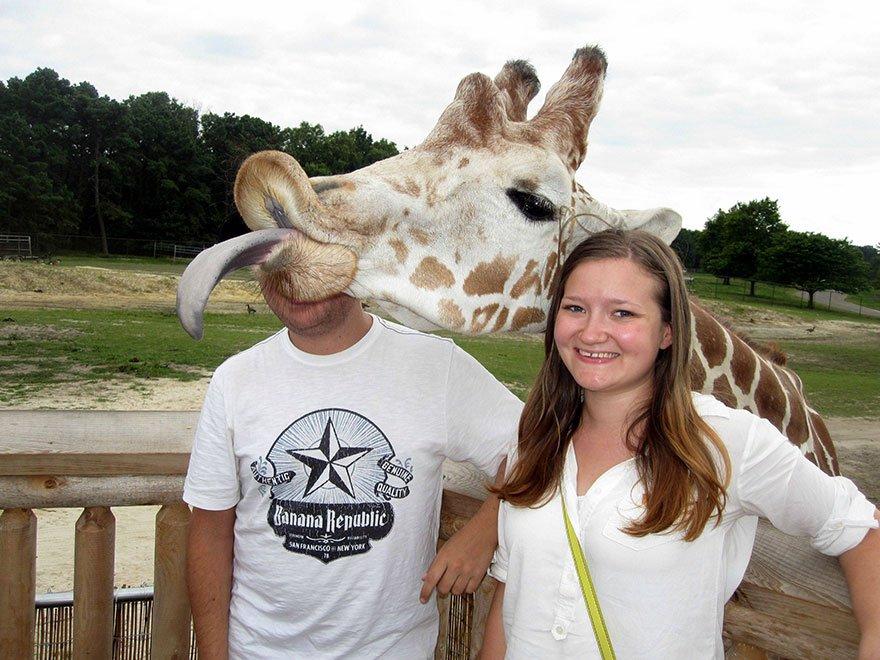 funny animal photobombs 9  880 - 순간적으로 찍힌 재미있는 동물사진