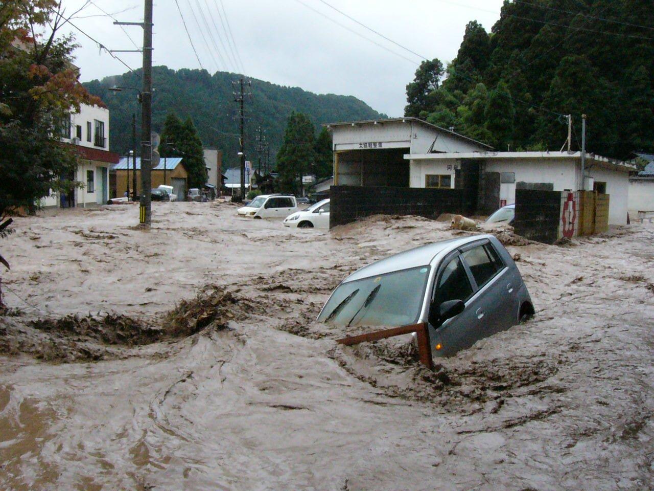 img 5a5060a7de9f1.png?resize=300,169 - 中国で大洪水!救出される豚さんの画像が可愛いとTwitterで話題