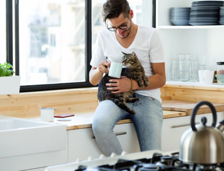 img 5a55bbe88a1ba.png?resize=1200,630 - 猫好き男子の特徴は?性格や生活スタイルの傾向を紹介
