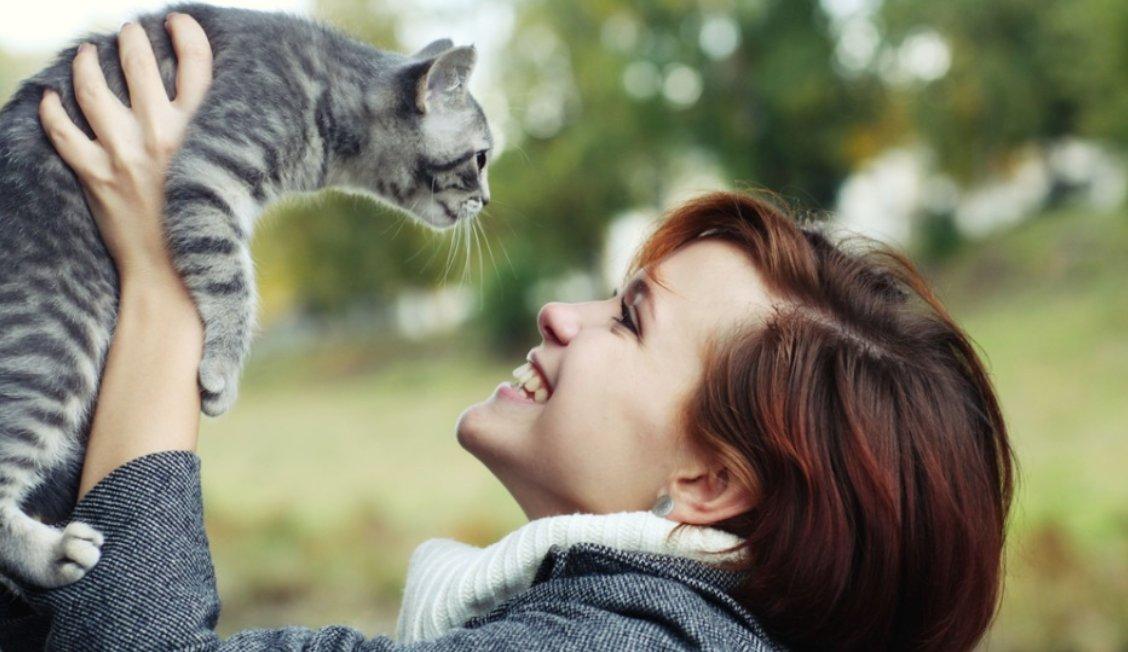 img 5a5c5d3602d6b.png?resize=1200,630 - 猫好きってどんな性格?5つの特徴から攻略法を考えよう!
