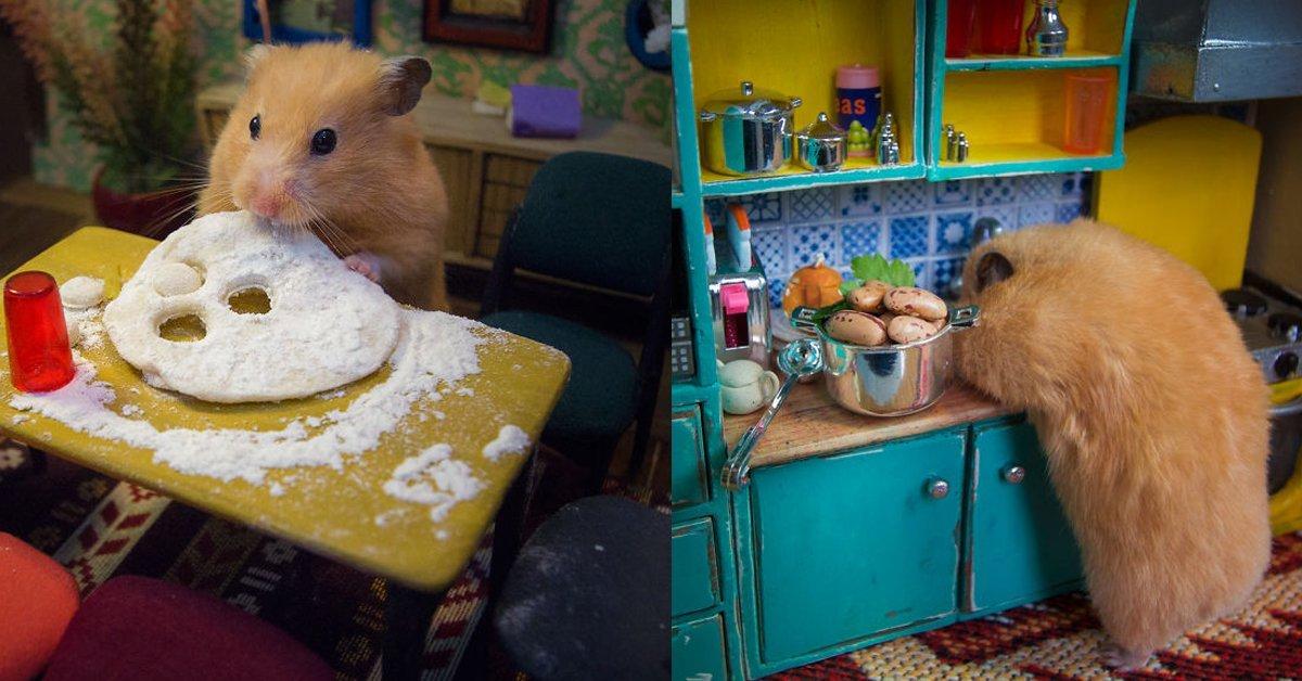 img 5a6244a0d31b2 - 尖叫聲~花2000小時打造的鼠鼠愛吃小鎮村,第一集激萌開播!