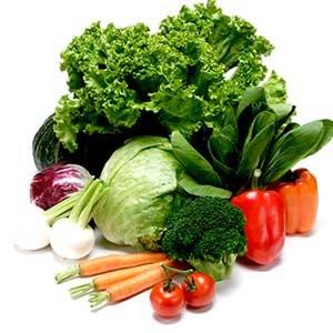 食物繊維에 대한 이미지 검색결과