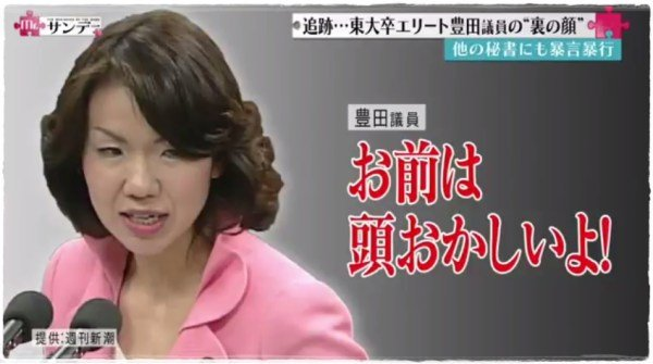 Image result for 豊田議員