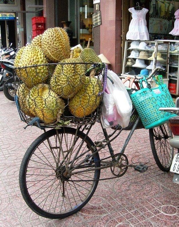 jackfruit4