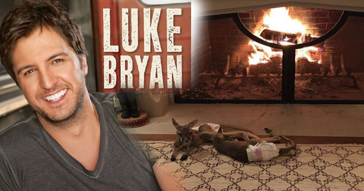 kangarooforchirstmas - Country Music Celebrity Luke Bryan Brought 'Special' Christmas Gifts, And It Is Kangaroos..