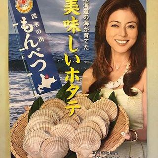 武田久美子 貝殻 真似에 대한 이미지 검색결과