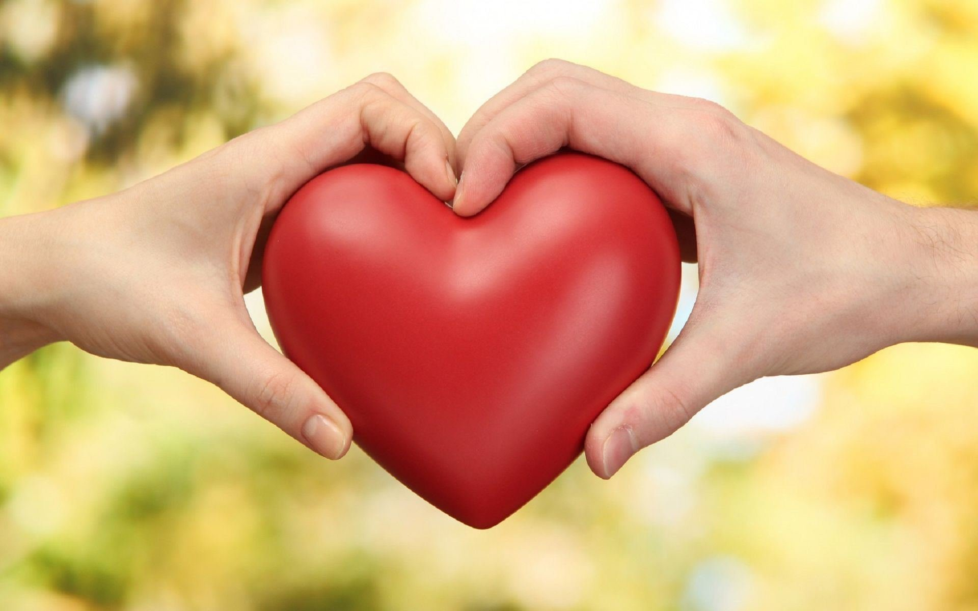 o型女性,恋愛에 대한 이미지 검색결과