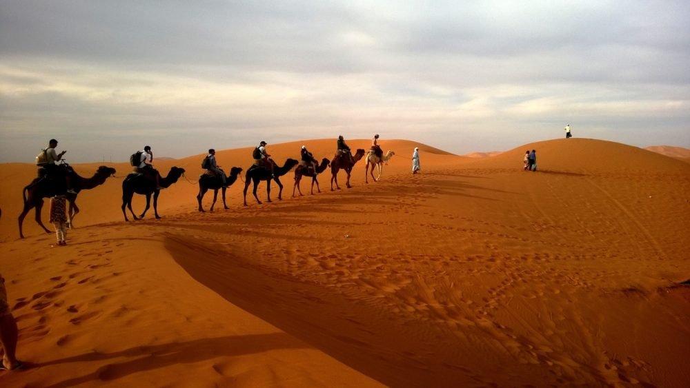 luxury enjoy traveling dubai dubai desert safari camel ride 1000x563 - 豪勢にいきましょ!ドバイ旅行の楽しみ方