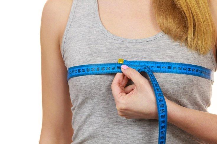 胸のサイズの測り方에 대한 이미지 검색결과