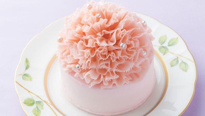 カーネーション ケーキ에 대한 이미지 검색결과