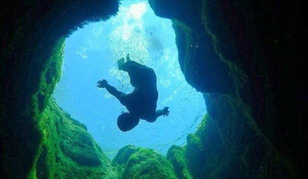 「ブルー・ホール ダイビングス」の画像検索結果