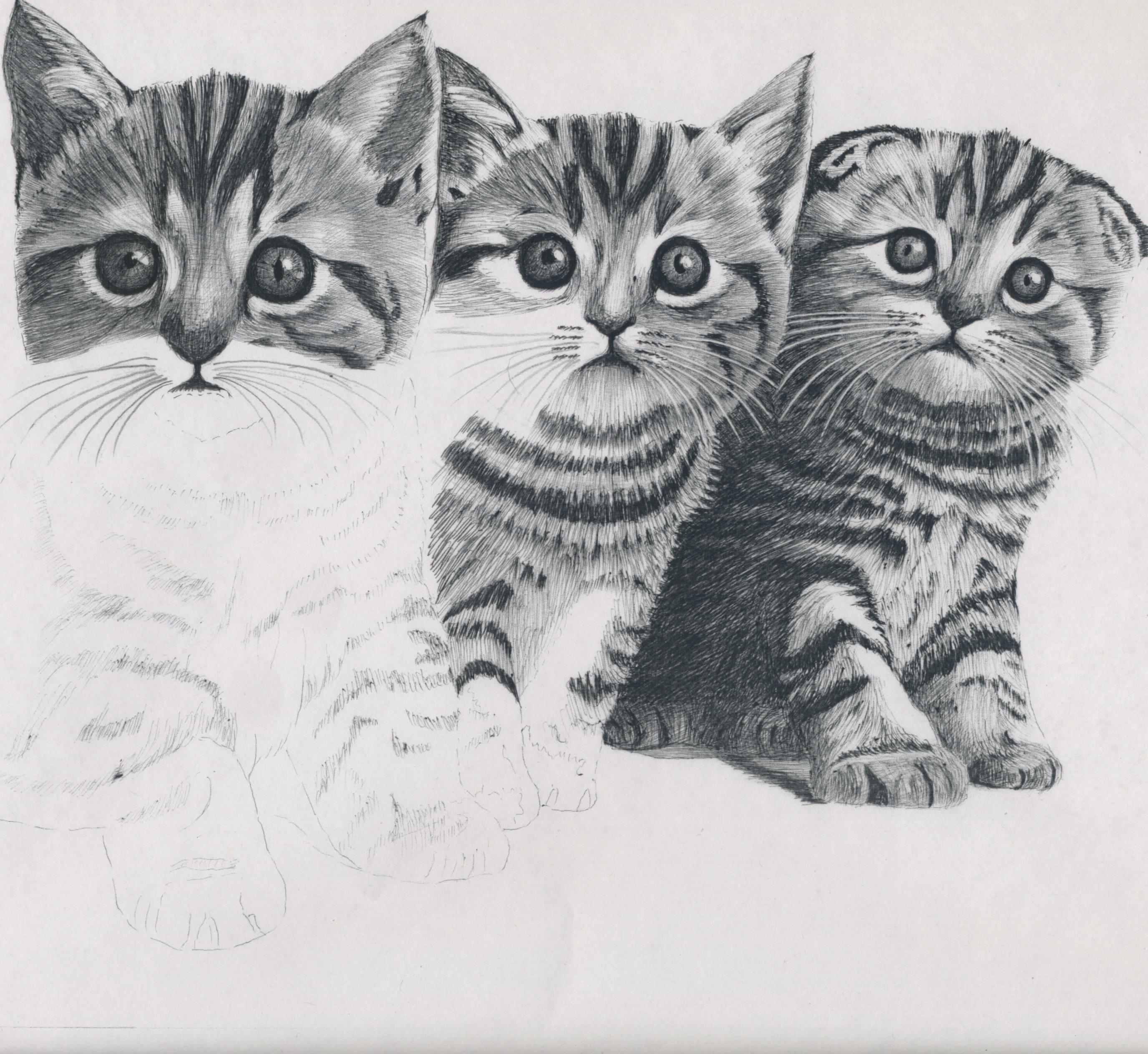 ボールペン画에 대한 이미지 검색결과