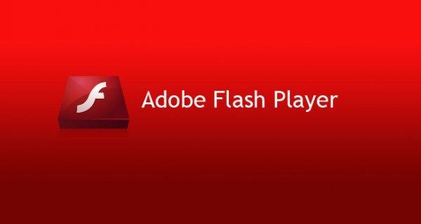 Adobe Flash Player에 대한 이미지 검색결과