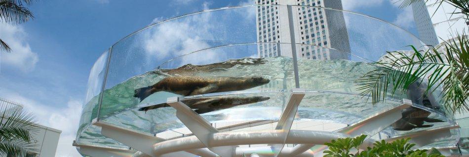 池袋 サンシャインシティ 水族館에 대한 이미지 검색결과