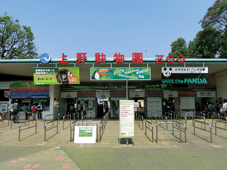 Image result for 上野動物園