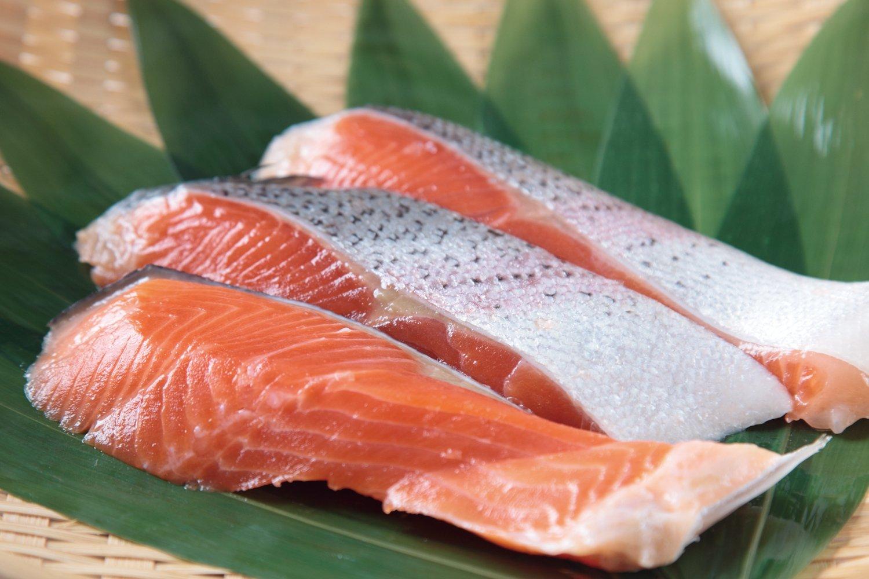 鮭에 대한 이미지 검색결과