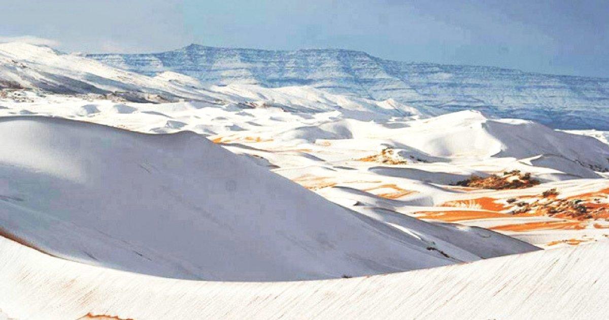 sans titre 11.png?resize=1200,630 - Le Sahara... sous la neige offre un paysage hors du temps.