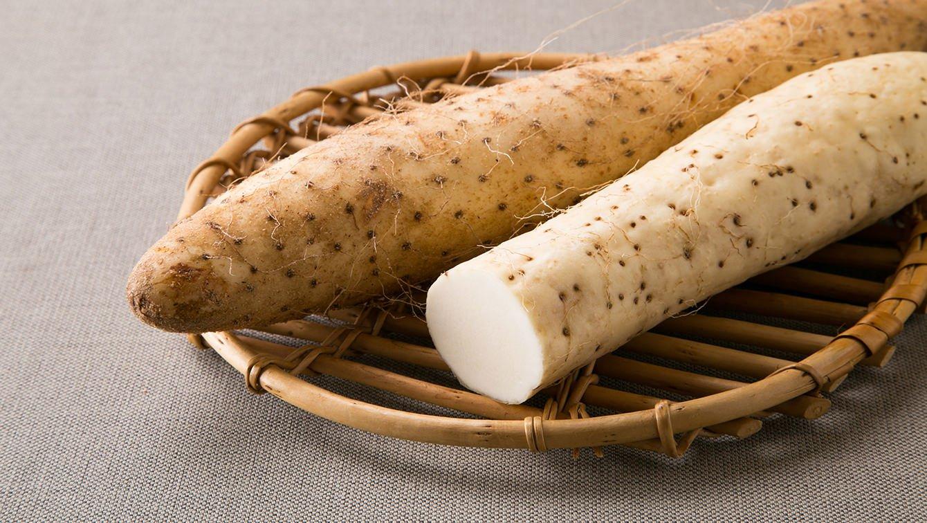 長芋에 대한 이미지 검색결과
