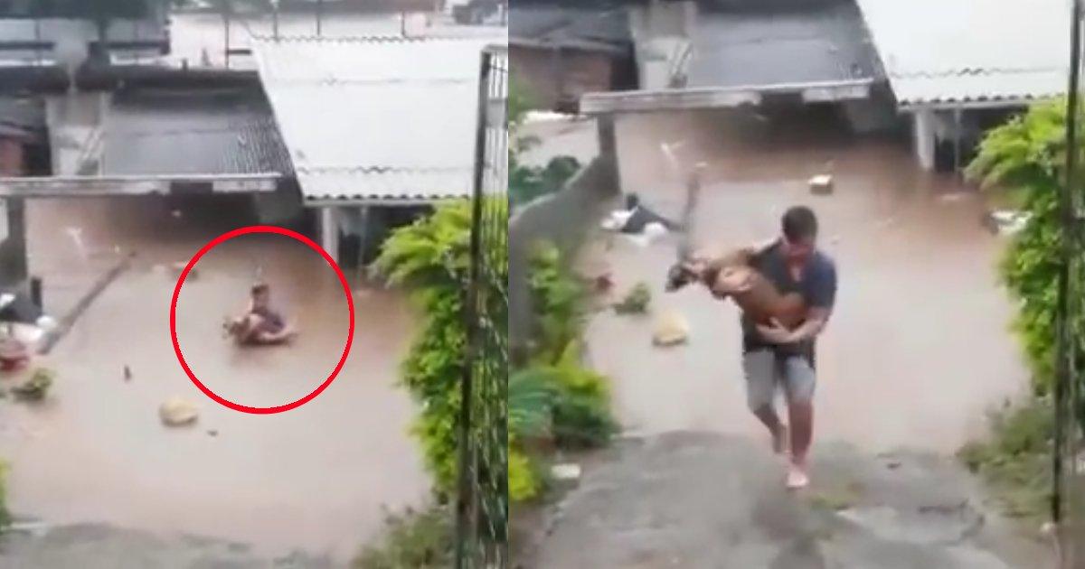 thumbnail5rre.png?resize=1200,630 - Homem arrisca a própria vida para salvar uma cadelinha em uma enchente