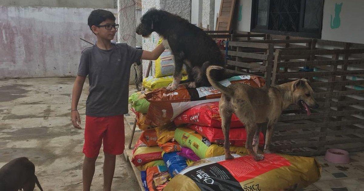 thumbnail5sa.png?resize=1200,630 - Garoto pede como presente de aniversário doações para um abrigo de animais