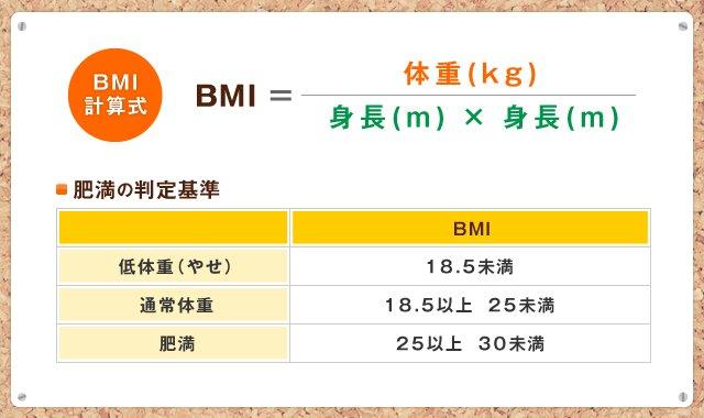 bmi,理想에 대한 이미지 검색결과