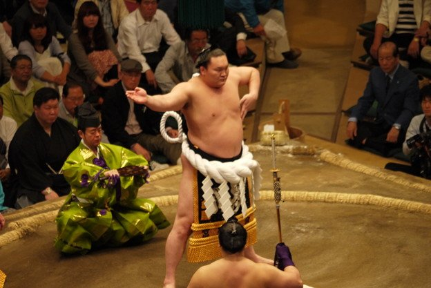 Image result for 横綱白鵬