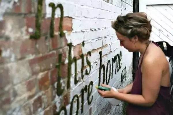 wvd1 - 將「優格、啤酒、青苔」潑在牆上,幾天後火大的鄰居「反過來謝她」!