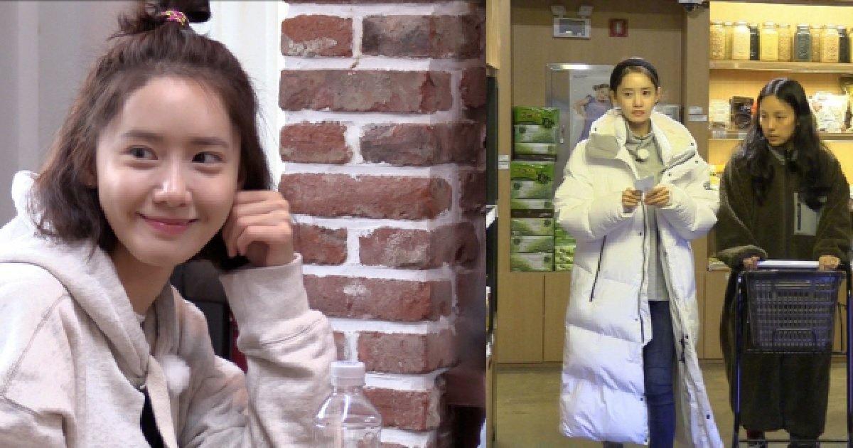 JTBC'효리네민박2'