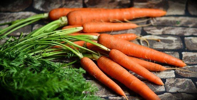 당근, 야채, 수확, 건강한, 빨간 당근, 연방 정부, 연방 당근, 영양