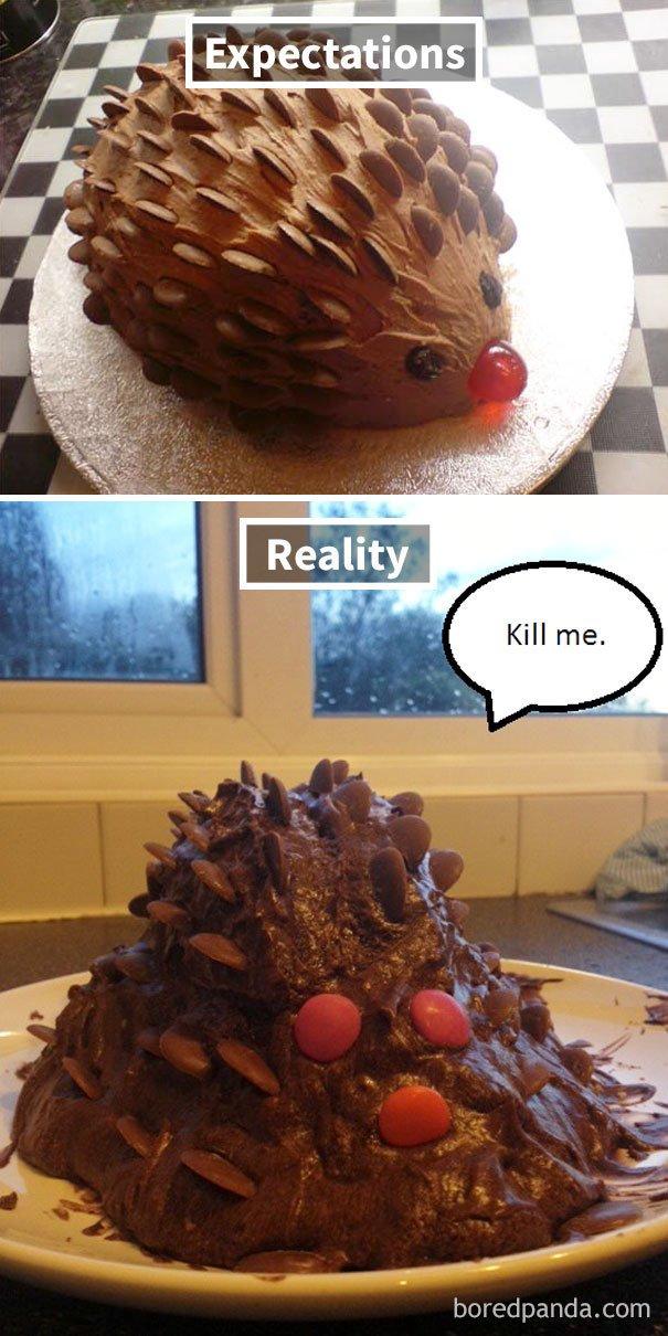 Chocolate Hedgehog Cake