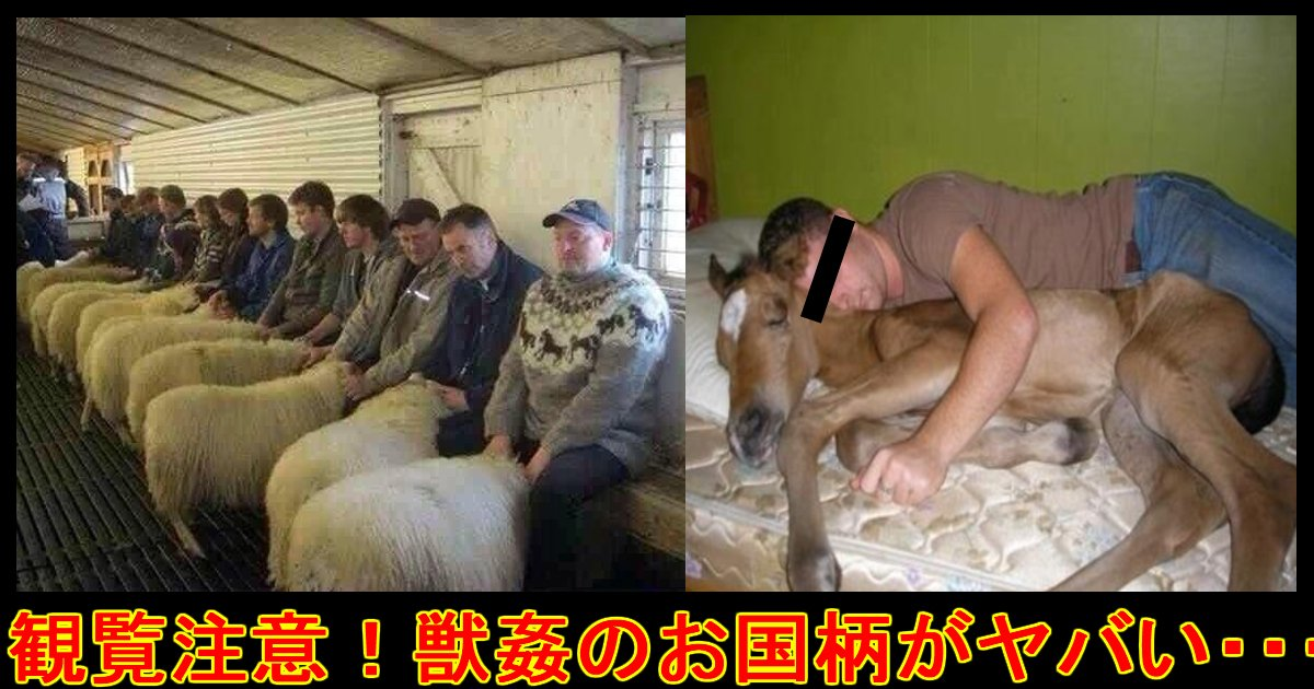 animalsugan ttl.jpg?resize=300,169 - 【観覧注意・ショック】国によってタイプは違う?動物を性的対象に見る人達