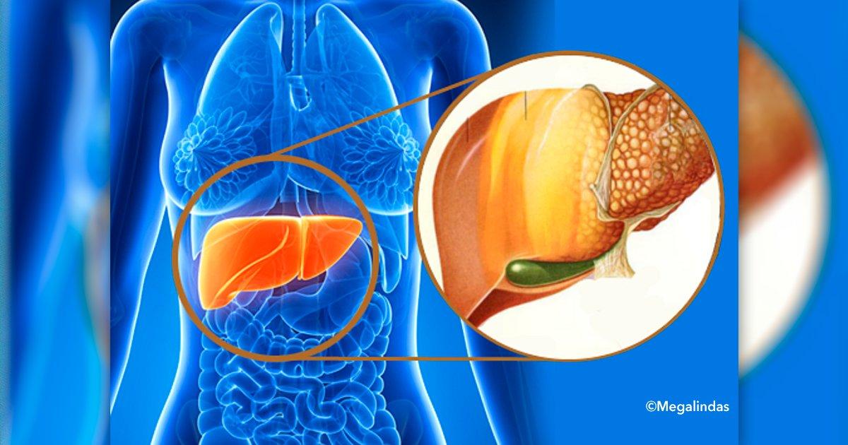 cover 4aaa.png?resize=300,169 - Todo lo que deberías saber sobre la enfermedad del hígado graso