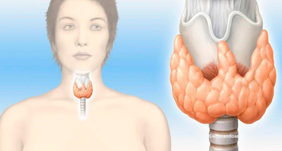 cover 4hipore.png?resize=300,169 - ¿Qué es el hipotiroidismo? Te diremos como identificarlo y cuál es su tratamiento