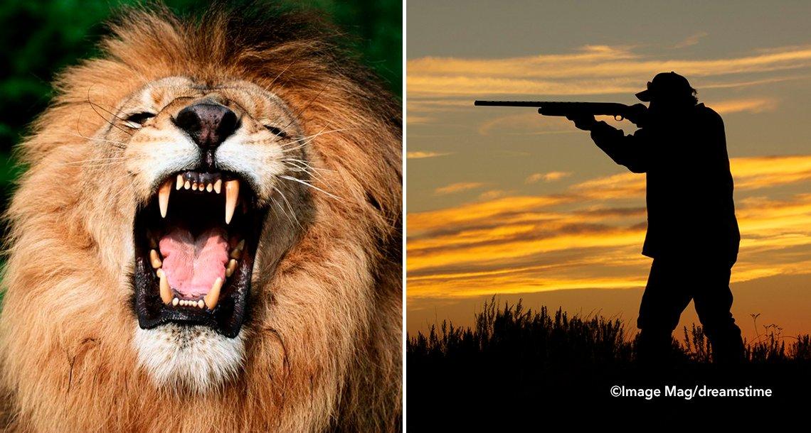 cover 4lion 1 - Leones se devoran a un cazador infiltrado en una reserva sudafricana