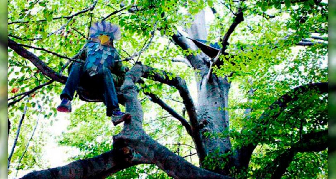 cover 4pajaro.png?resize=300,169 - Se disfrazó de pájaro para defecar personas desde un árbol