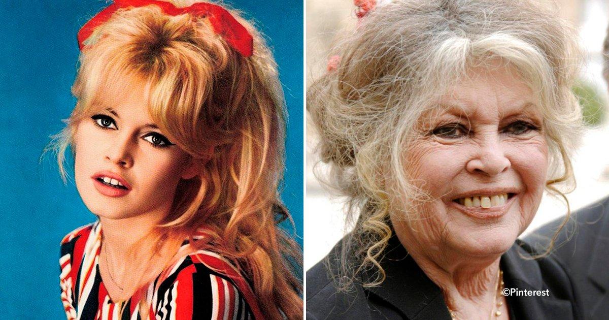 cover 4sss 2.png?resize=1200,630 - La actriz francesa Brigitte Bardot renunció a su carrera por una increíble causa