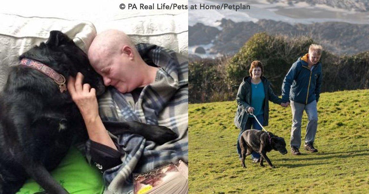 cover 67.jpg?resize=1200,630 - Uma mulher e sua cadelinha tinham câncer, mas ambas ganharam a batalha!