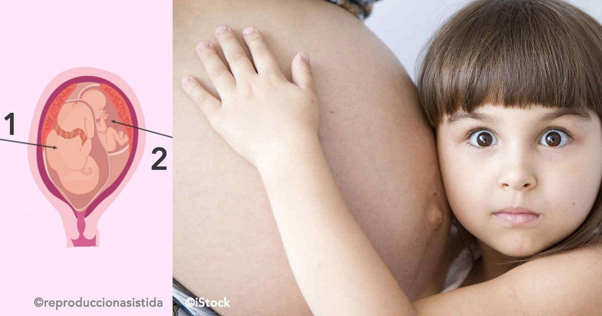 cover 76.jpg?resize=1200,630 - Superfetación, son los casos de mujeres que estando embarazadas vuelven a embarazarse