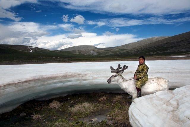 dukha-tribu-mongolie-renne-6