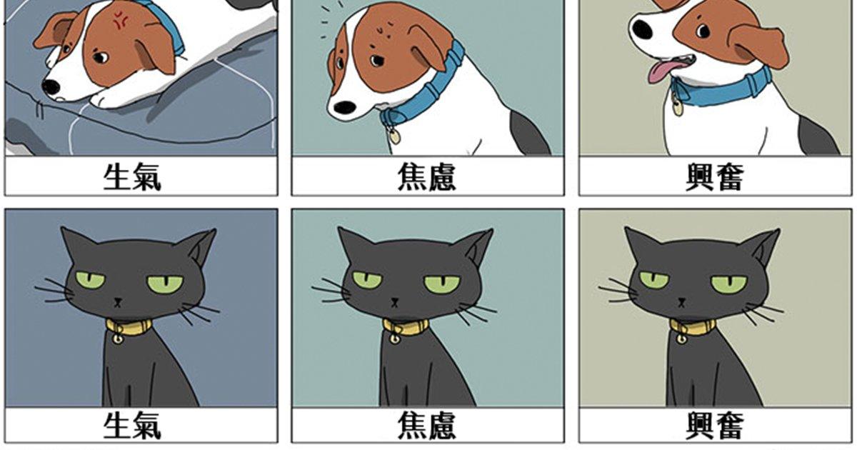 e69caae591bde5908d 1 34.png?resize=1200,630 - 讓你超有共鳴的「貓vs.狗日常差異」看來貓奴的心臟都比較大顆啊...