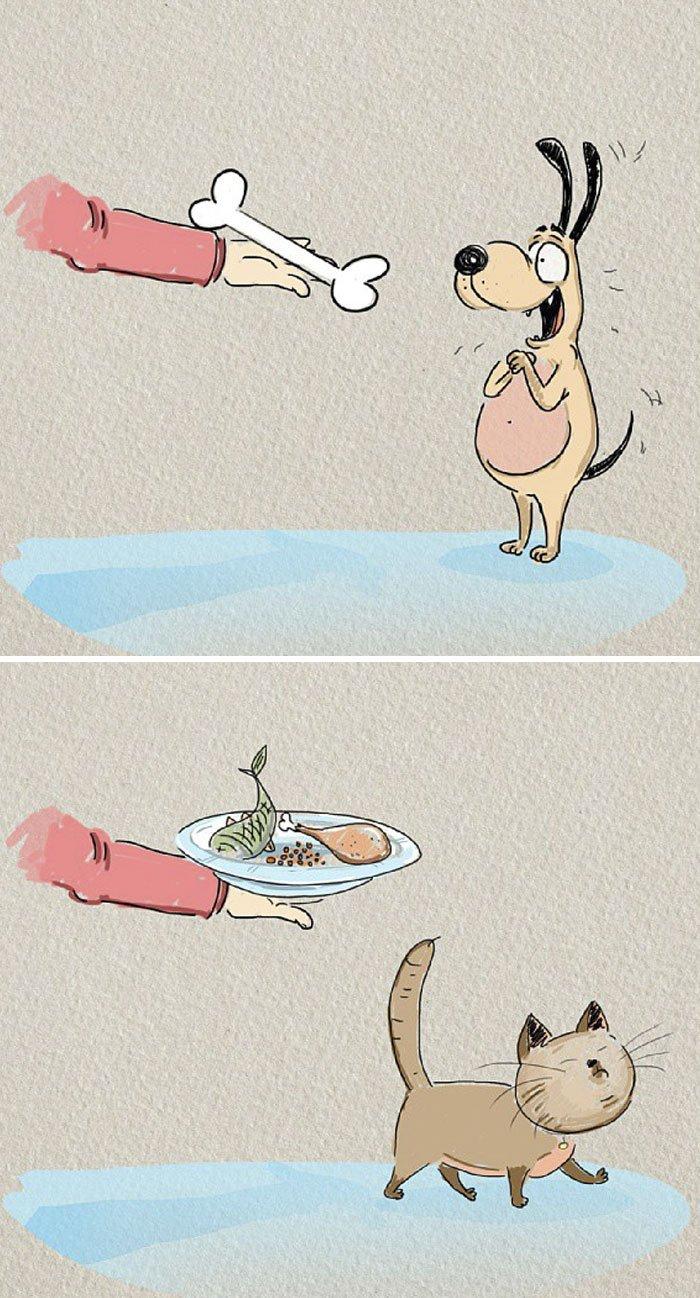funny-cats-vs-dogs-comics-12-59bfd07193e5d__700