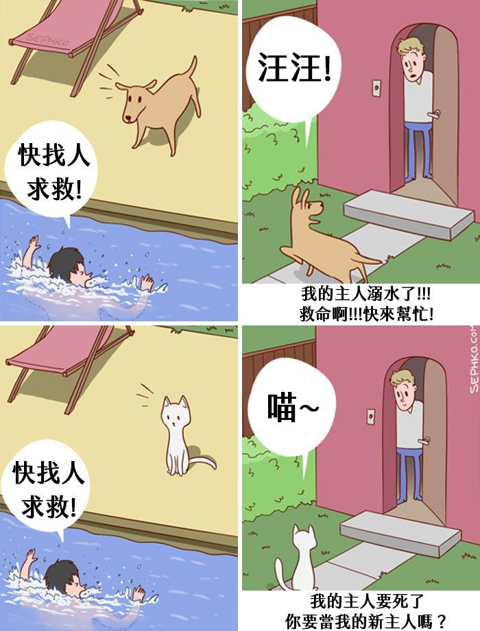 funny-cats-vs-dogs-comics-15-59c259b5ee6ce__700