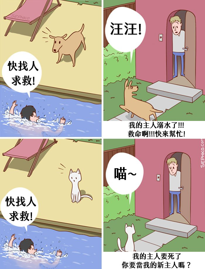 funny-cats-vs-dogs-comics-15-59c259b5ee6ce__700