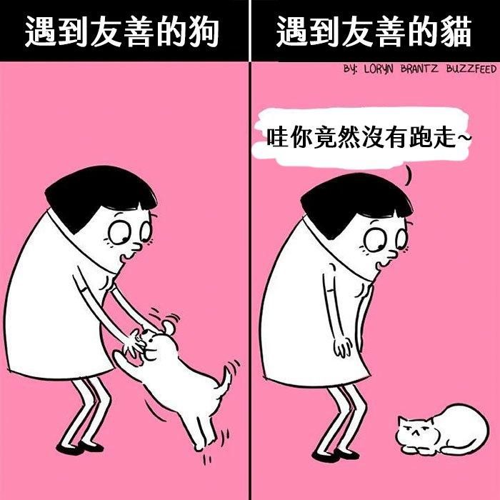 funny-cats-vs-dogs-comics-2-59bfaaf210ff9__700